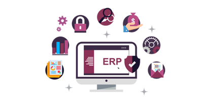 Custom ERP Solutions in Pune